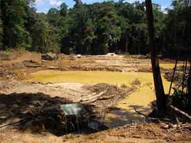 Pollution au mercure en Guyane : un bilan inquiétant