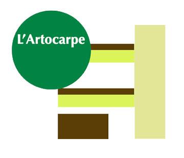 artocarpe-360