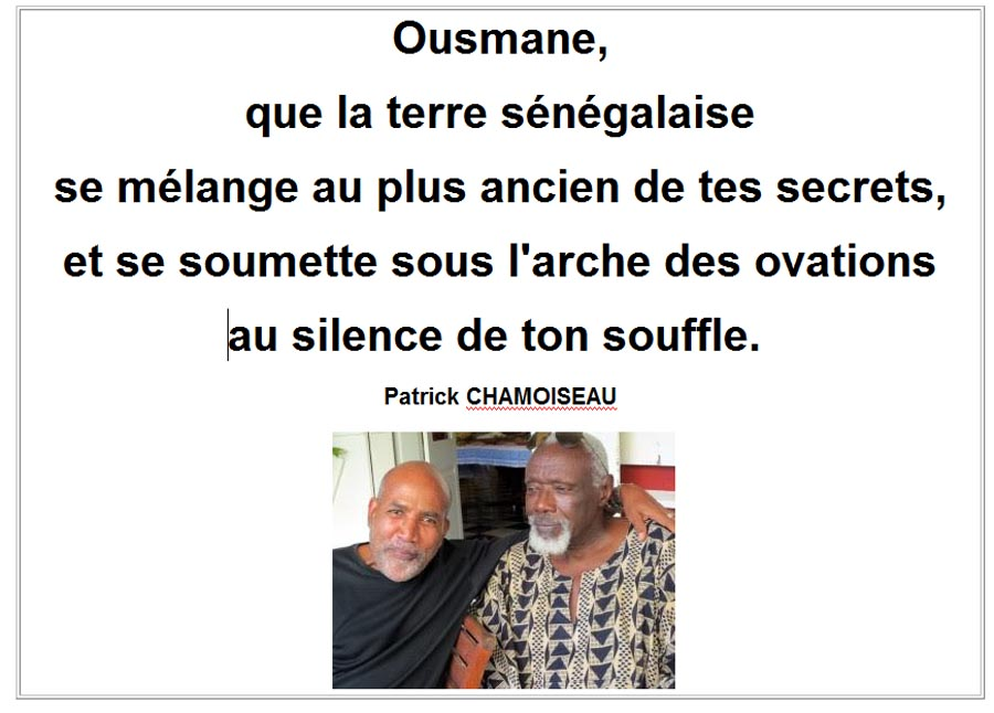 ousmane_sow-chamoiseau