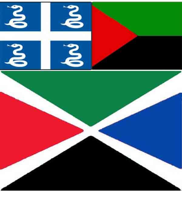 Un drapeau-emblème régional ou un drapeau national martiniquais(...)