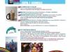 programme-festival-fort-de-france-2017-3